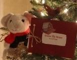 A Tale of Dottie the Mouse'sTrek