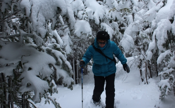 Searching for Spring on Snowshoes!