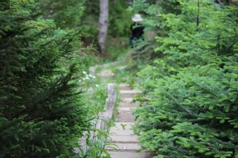 Stanleyville Trail