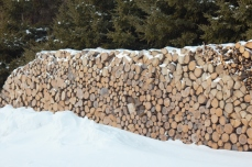 Woodpile by SH