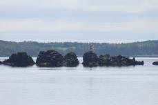 Canoe Rocks