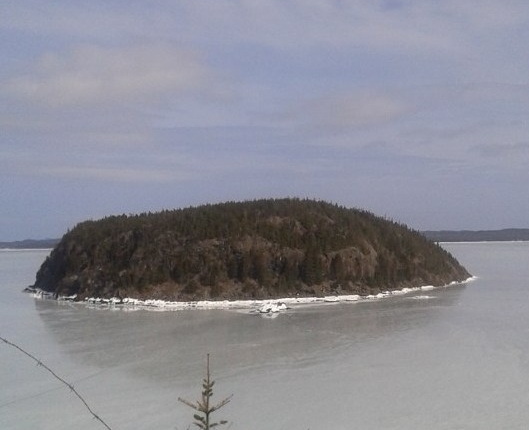 Cull's Point LookoutTrail