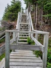 Pike's Arm Trail