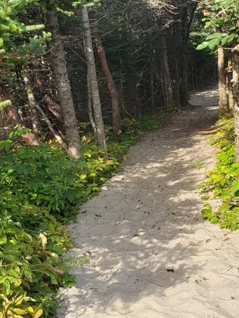 Sandbanks Provincial Park, Burgeo NL