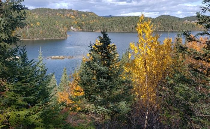 Maple Ridge Trail, TritonNL